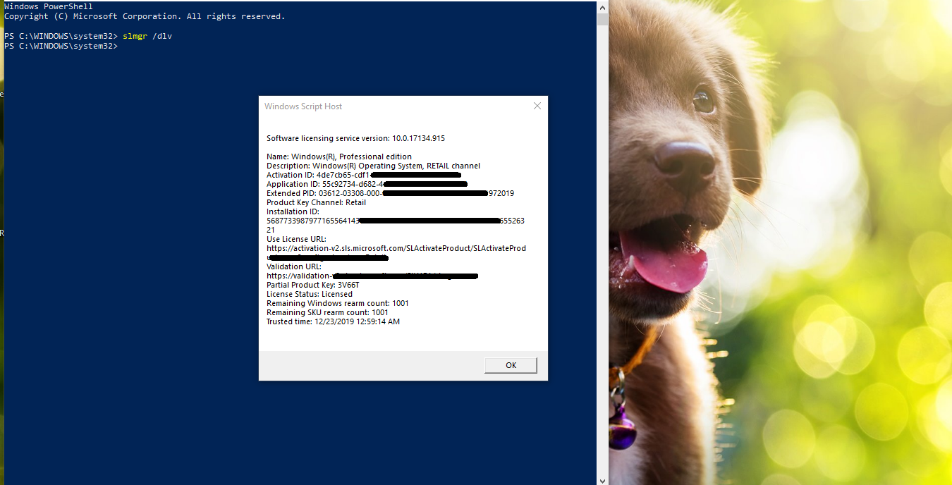 How-to-check-if-your-Windows-10-License-is-Genuine